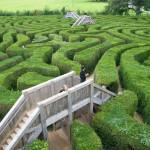 Longleat-maze-sml
